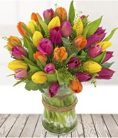 Tulip Fayre