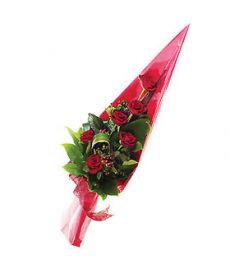 Cupids Arrow Flower
